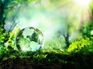 nachhaltigkeit im Unternehmen | Dent Wizard Dellen-und Hagelschadenservice